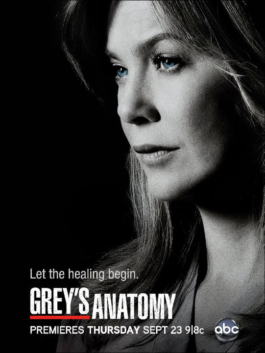 Greys-Anatomy-Season-7-Poster-3